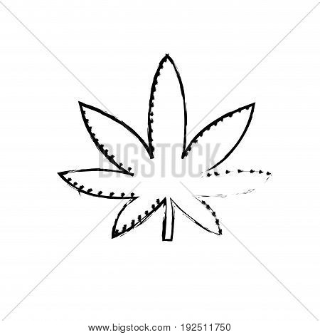 figure marijuana plant with leaves and medical herb vector illustration