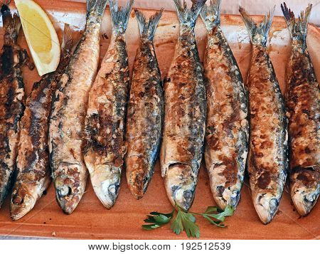 Tray with grilled sardines ready to eat