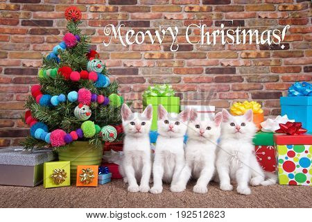 Four fluffy white kittens sitting in a row on brown carpet next to small Christmas tree with yarn balls and toy mice decorations surrounded by colorful presents with bows. Meowy Christmas text.