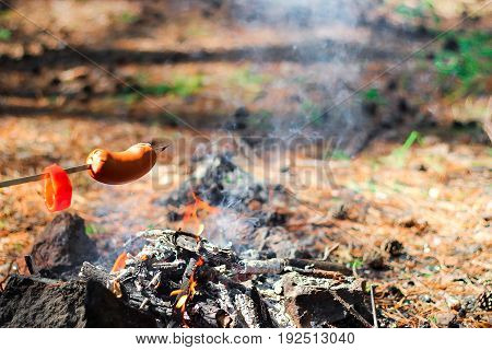 The sausage on skewer fried at the stake in forest. Picnic in nature. Selective. Blurred background.