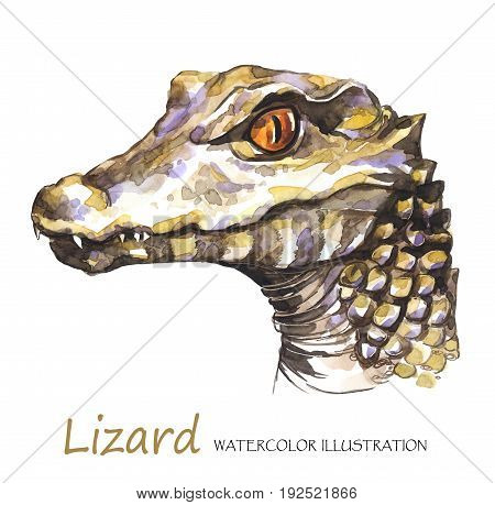 Watercolor Lizard on the white background. Exotic animal. Wildlife art illustration. Can be printed on T-shirts, bags, posters, invitations, cards, phone cases, pillows. Place for your text.