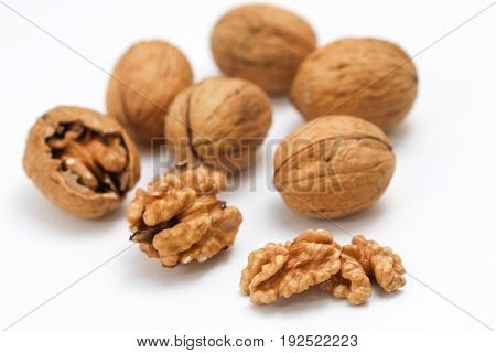 Walnut kernel and whole walnut isolated on white background.
