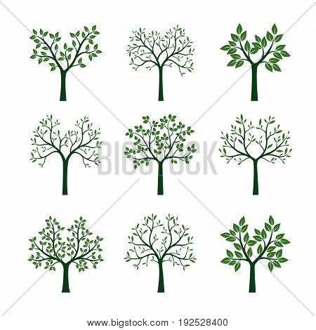 Set of green Trees. Vector Illustration and graphic element.
