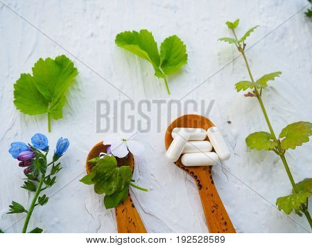 Alternative Health Fresh Plants And Herbal Capsules In Wooden Spoon On White Background, Space For T