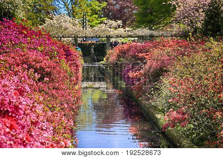 Beautiful landscape with small canal and colorful flowers, Holland. Selective focus