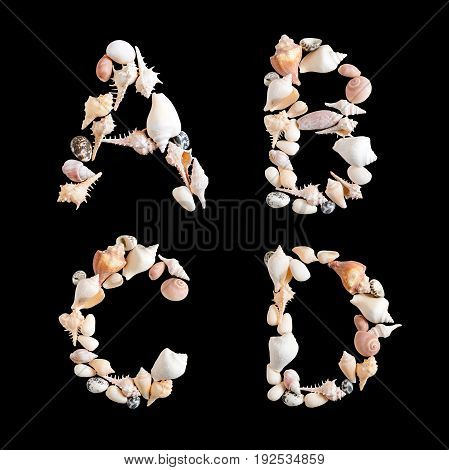 various sea shells capital A B C D on isolated black background with clipping path.