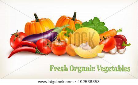 Big set of colorful vector vegetables. Vector illustration.