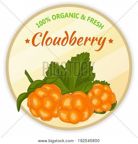 Vintage label with cloudberry isolated on white background in simple cartoon style. Vector illustration. Fruit and Vegetables Collection.