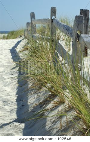 Fence At Beach With Grass