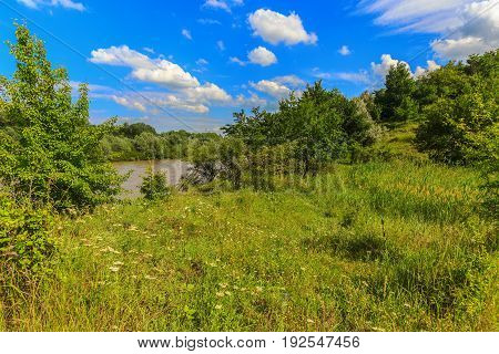 The river bank of water of which which has grown with a grass and trees because of rains in an upper course have clay color. Kuban Krasnodar Krai.