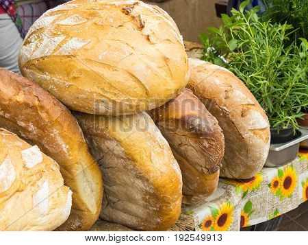 Heap of freshly baked traditional loaves of rye bread on stall at bazaar and green thyme in background