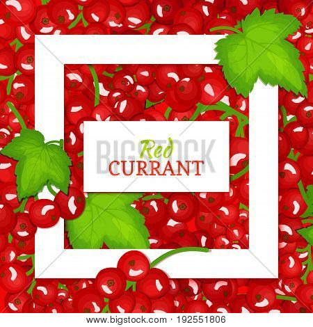 Square white frame and rectangle label on red berry background. Vector card illustration. Red currant fruit and leaves for packaging design food, juice, jam, ice cream, smoothies, detox, cosmetics, tea.
