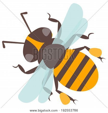 Vector happy cartoon bee flying delicious honey insect isolated animal. Yellow bug honeybee antenna detail pollen small worker buzz wings natural pollination honey bee.