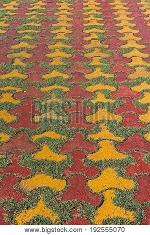 Paved Pathway with Lawn Grass, abstract design