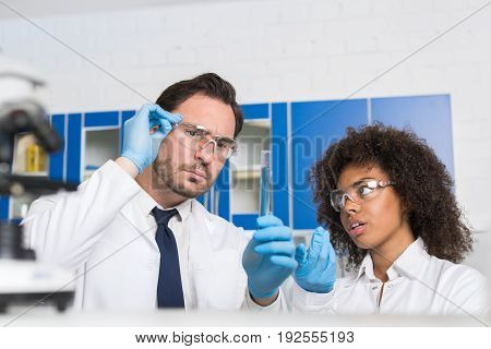 Two Laboratory Scientists Examining Liquid In Test Tube, Mix Race Lab Workers Study Results Of Chemical Research Experiment