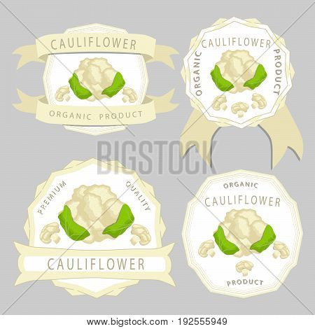 Abstract vector illustration logo whole ripe vegetable cabbage cauliflower, green leaf close-up on background.