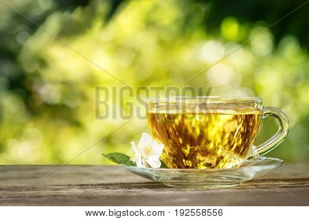 jasmine tea and jasmine flowers on wooden table with blurred green natural background. Glass cup of herbal tea. Tea time concept. Photo with copy space