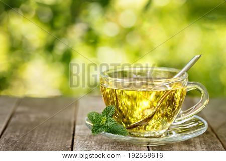 mint tea on wooden table with blurred green natural background. Glass cup of healthy medicinal herbal tea. Photo with copy space