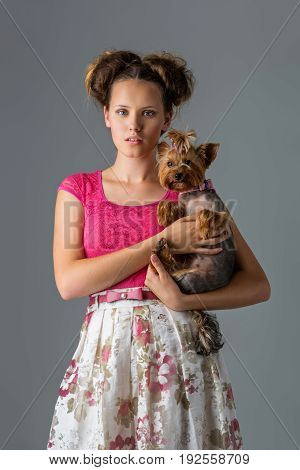 Beautiful young teenage girl in top and skirt holding small cute yorkshire terrier dog. Copy space. Studio shot on grey background.