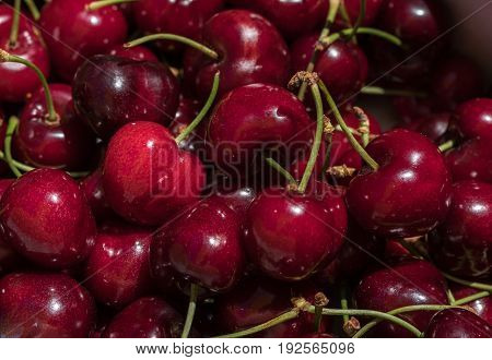 cherry detail macro of delicious fresh ripe red cherries with bright green stem, perfect food background Sweet cherry background