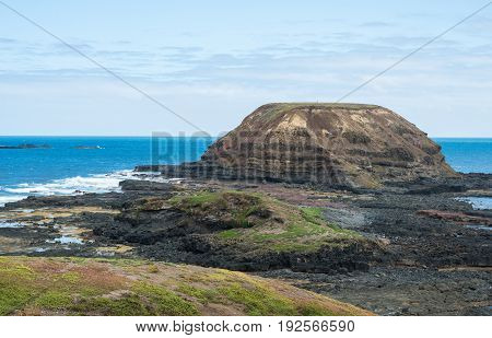 The Nobbies conservation area at Phillip Island of Victoria state of Australia.