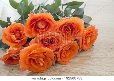 Selective focus of fresh orange roses on wooden background with copy space for some text Concept of love Valentines Day background wedding day