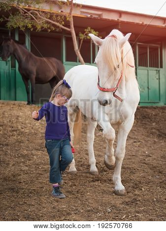 A cute little girl is playing with a horse