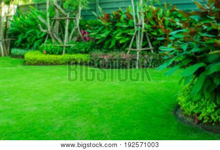 Blurred green lawn, the front lawn for background,garden landscape design