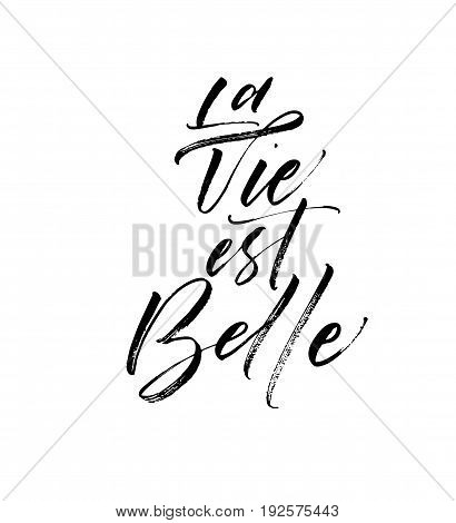 La vie est belle postcard. French expression. In English - life is beautiful. Ink illustration. Modern brush calligraphy. Isolated on white background.