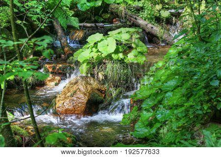 Detail of the flowing water between the boulders Bila Opava Czech republic
