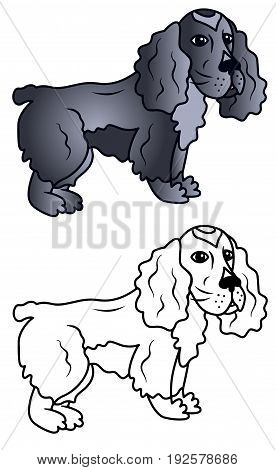 Dog caricature vector cocker spaniel funny colored illustration sketch animal brown