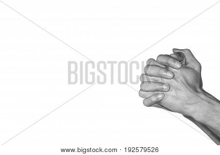 Praying hands. Black and white. Isolated on white background.