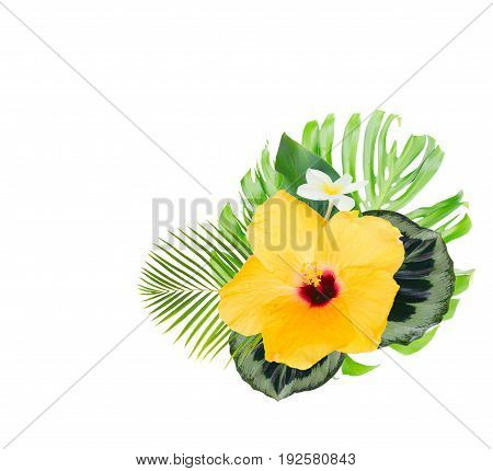 tropical flowers and leaves - fresh yellow hibiscus and white frangipani flowers and exotic palm leaves isolated on white background