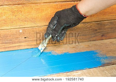 Employee Wearing Gloves, Paint The Wooden Surface Of The Table With A Brush And Paint Blue