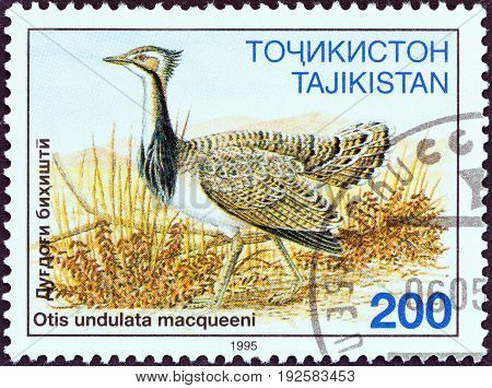 TAJIKISTAN - CIRCA 1995: A stamp printed in Tajikistan from the