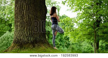 Attractive young female is practicing yoga and doing asana Vrikshasana in the morning. Back view.