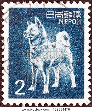 JAPAN - CIRCA 1980: A stamp printed in Japan shows Akita dog, circa 1980.