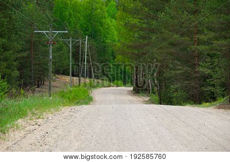 Dirt road in the mixed forest. Telegraph poles on one side of the road.
