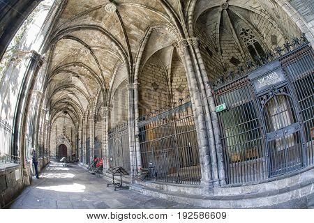 BARCELONA SPAIN - APRIL 20: Atrium at Barcelona cathedral on April 20 2017 in Barcelona
