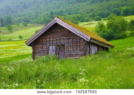 Wooden house on a hillside with a grass roof