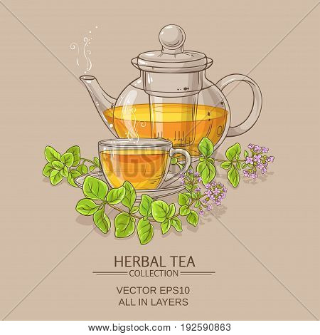 cup of oregano tea in teapot on color background