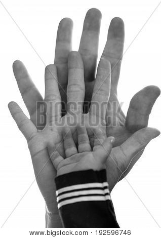 B W Family hands isolated on white background