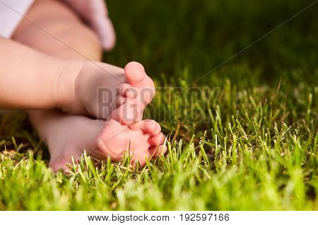 Close up of baby's feet on the green grass on the meadow at warm day. Horizontal croped photo. Small cute feet of liitle child. Concept of the happy babies.