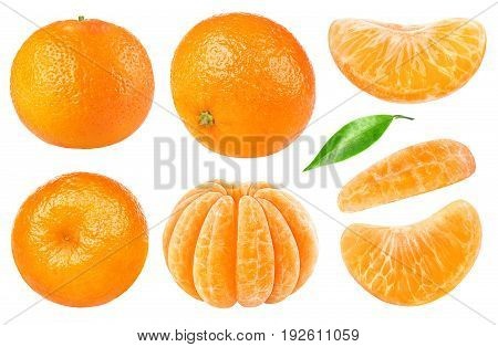 Isolated Tangerine Collection