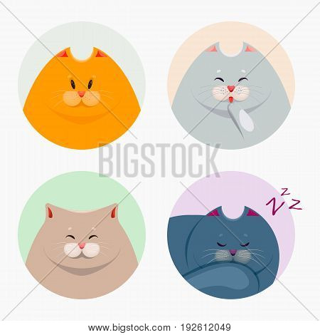 Collection of cute cats. Vector illustration .