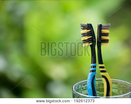 Duo Toothbrushes In Glass On Blurred Green Background