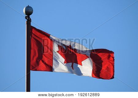 Waving Canadian flag against blue sky for celebrating Canada 150 years