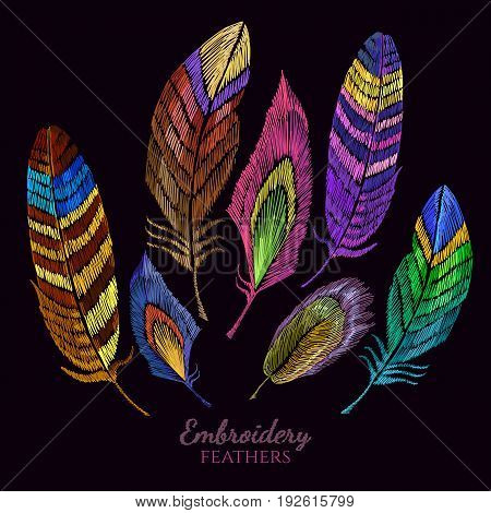 Color feathers embroidery collection fashionable template for design of clothes t-shirt design. Beautiful feathers of tropical birds classic embroidery