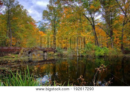A beautiful autumn scene at Mallard Lake inside Oak Openings Preserve Metropark in Toledo Ohio.
