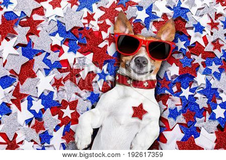jack russell dog on independence day 4th of july on a background of usa Stars wearing funny sunglasses